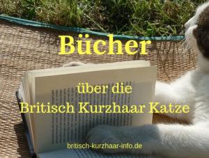 BKH Bücher
