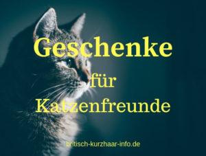 Katzenbild mit Schriftzug: Geschenke für Katzenliebhaber